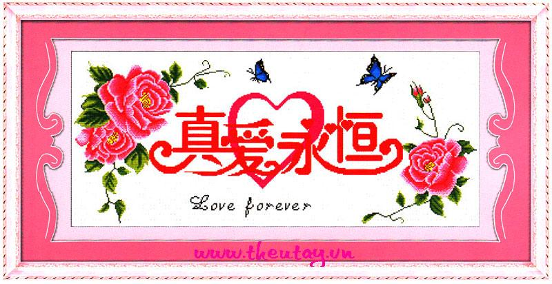 Love Forever (Không In)